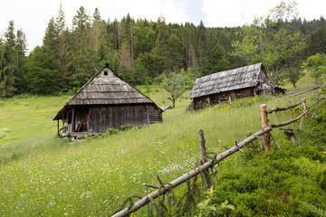 Two old wooden house on a hillside, surrounded by a fence. Fores
