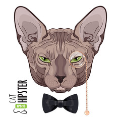 Cat Sphinx. Portrait of a green-eyed Sphinx Cat hipster in the monocle with gold rim and chain, and black bowtie