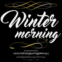 Font Script Typeface Winter morning vintage script font Vector typeface for labels and any type designs