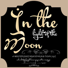 Font Script Typeface ?n the light of the Moon vintage script font Vector typeface for labels and any type designs