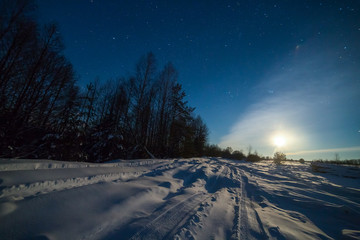 Winter night landscape with woods under starry sky