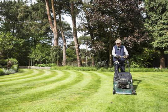 Senior man mowing lawn in garden