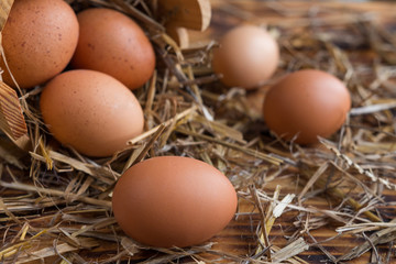 Brown eggs in the straw close-up in a rustic style