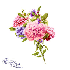 Flowers. Bouquet of carnations and peony. Hand drawn flowers. Vector - stock.
