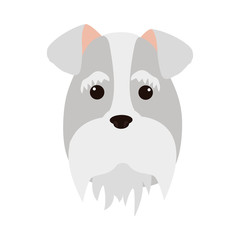 cute dog face icon over white background. colorful design. vector illustration