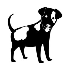 dog face icon over white background. black and white design. vector illustration