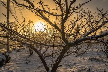 Nascer do sol.Um dia depois da neve.