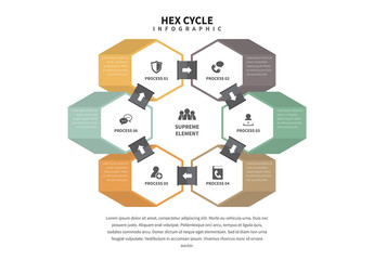 3D Hex Cycle Infographic