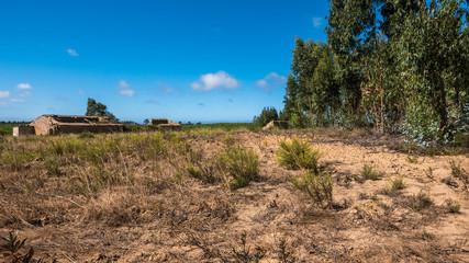 Portugal - Dry grasslands