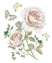 Watercolor vintage tea roses bouquet with butterflies