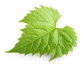Fototapete - Grape leaf isolated on white background.
