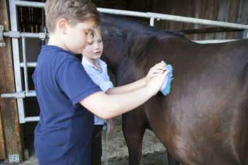 Two boys grooming horse in stable