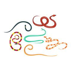 Snake reptile cartoon vector set.