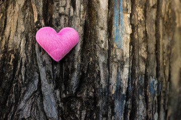 Pink heart on the tree for valentines day.