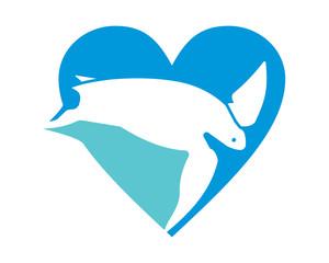 blue heart turtle