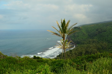 Hawaii-Big Island, Kona