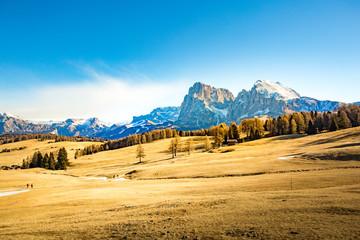 Alpe di Siusi, Dolomiti, Trentino Alto Adige, Italia.