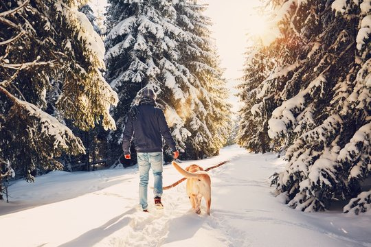 Trip to winter nature