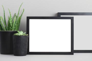 Photo frame and houseplant plant on shelf