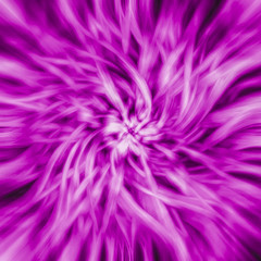 abstraction purple flower