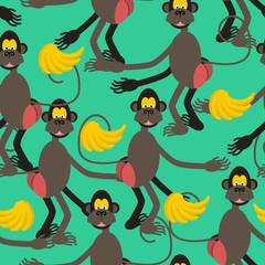 Hamadryad seamless pattern. monkey red butt and banana backgroun