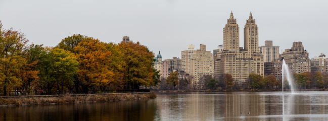 View of Central Park in December in New York