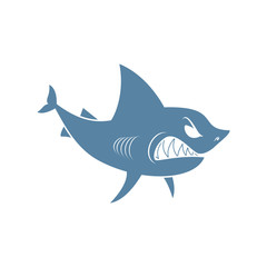 Shark isolated. Marine predator on white background