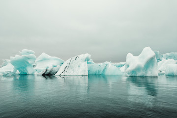 Icebergs reflected on sea
