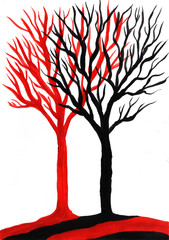 Red and black trees