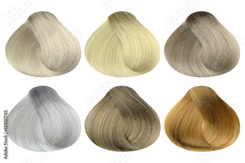 Set of locks of six different blonde hair color samples (arctic ...