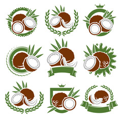 Coconut labels and elements set. Vector