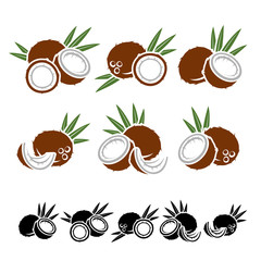 Coconut set. Vector