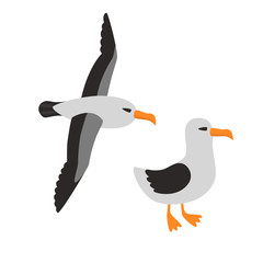 Bird Albatross Set Cartoon Vector Illustration