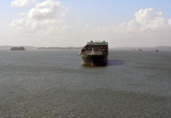 Green Cargo Ship Panama/Large green cargo ship in Gatun Lake at the Panama Canal