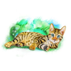 Watercolor portrait of serengeti cat with dots, stripes isolated on green background. Hand drawn detailed sweet home pet. Bright colors, realistic design. Greeting card design. Clip art. Add your text