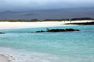 The serene turquoise waters of Cerro Brujo beach on San Cristobal Island, Galapagos