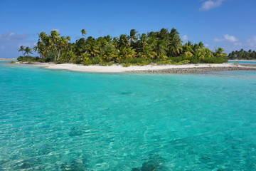 Tropical islet with coconut palm trees and turquoise water, atoll of Tikehau, Tuamotu archipelago, French Polynesia, south Pacific ocean