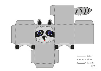box toy small raccoon