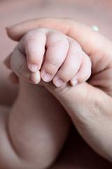 Маленькая ручка младенца держит руку взрослого