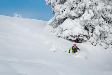 Wall Mural - Freeride skiier riding in deep powder snow