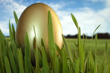 Gold decorated easter egg in grass on sky background