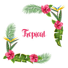 Frame with tropical leaves and flowers. Palms branches, bird of paradise flower, hibiscus