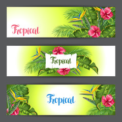 Banners with tropical leaves and flowers. Palms branches, bird of paradise flower, hibiscus