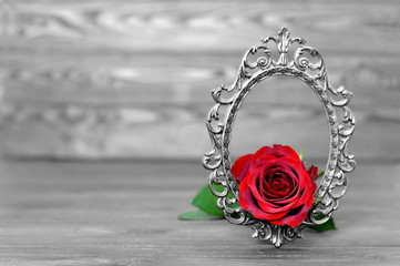 Mothers Day rose in the vintage frame on wooden background