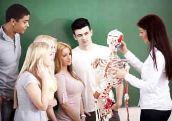 Students in Anatomy Class