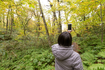Back rear view of woman taking photo in forest