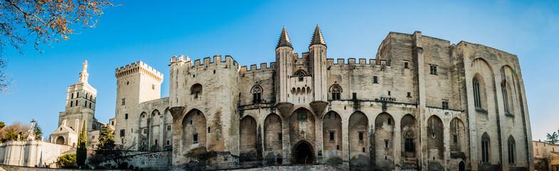 Panorama du Palais des Papes d'Avignon et la Cathédrale Notre-Dame-des-Doms