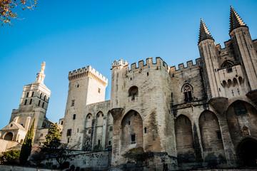 Le Palais des Papes d'Avignon et la Cathédrale Notre-Dame-des-Doms