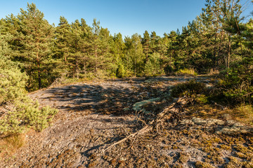 Forest and rocks at Rörbäck Munkeby Uddevalla, Sweden