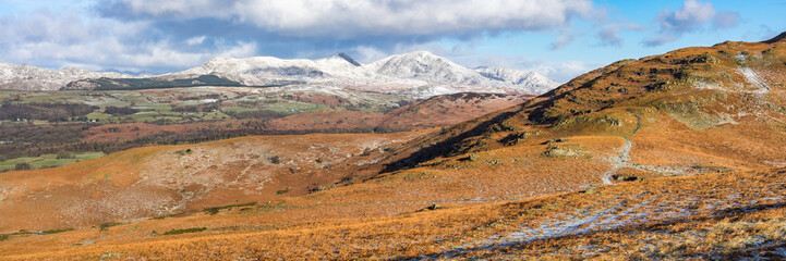 Coniston Fells from Subberthwaite Common